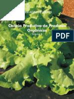cadeira produtiva de produtos orgânicos 5