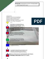 Documento Completo Preparacion de Jabon en Polvo