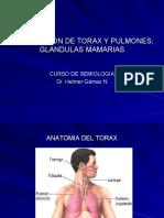 Exploracion de Torax y Pulmones