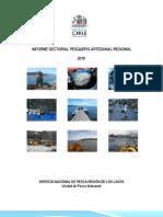 2010 Informe Sectorial Pesquero Artesanal Regional