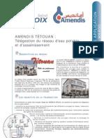 DA-Amendis-Fr-2005-03