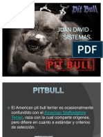 PITBULL Power Poin