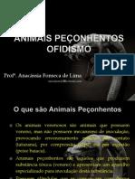 Animais peçonhentos ofidismo
