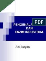 enzim-i