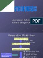 Elektroforesis (Tekim)