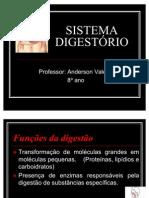 apresentacaosistemadigestorio1-100416154525-phpapp02