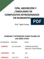 DIGESTIÓN, ABSORCION Y METABOLISMO DE COMPUESTOS NITROGENADOS