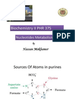 Nucleic Acids Metabolism Lecture