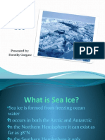 9 Dorothy Sea Ice 2010