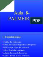 PLANTAS ORNAMENTAIS - PALMEIRAS