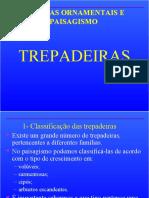 PLANTAS ORNAMENTAIS - TREPADEIRAS