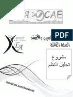 مشروع تحليل النظم