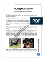 Crni Lotos Interview, Rottweiler breeder in Serbia - English