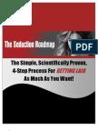 Seduction Roadmap Report