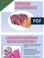 Reticulo Endplasmatico