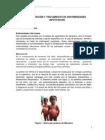 PREVENCIÓN Y TRATAMIENTO DE ENFERMEDADES INFECCIOSAS
