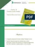 dominio_lector