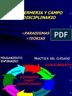 PARADIGMASTEORIAS TERESITA 1