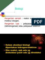 oksidasi-biologi
