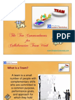 Ten Commandments for Collaborative Team Work