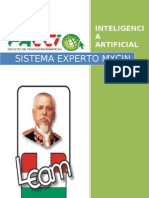 SISTEMA EXPERTO MICIN