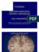 Tutorial Coronal RESP