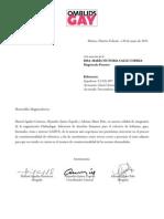 Amicus Curiae Daniel Antonio Sastoque Coronado - Corte Constitucional de Colombia