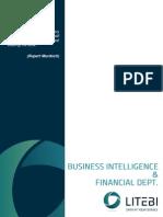 Whitepaper BI and Financial Dept