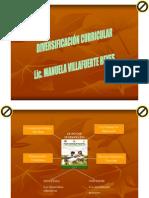 2 Diversificacio Curricular Secundaria[1]