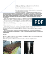 Tratamiento Inicial y Definitivo de fracturas del Fémur con Fijación Externa Monolateral. Daniel Colletta, Osvaldo Cordano, Alberto Vaccarelli, Claudio Guerreiro