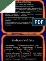 Sindrome Nefrotica