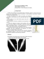 Tratamento Funcional das Fracturas da Diáfise da Tíbia. Madeira Dias, Ana Inês, Pedro Marques, Ciro Costa