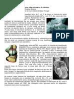 Tratamento cirúrgico de fracturas intra-articulares do calcâneo. Rosa Mamede, Cristina Milho, Rodrigo Moreira