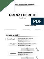 Curs Grinzi Perete 2008