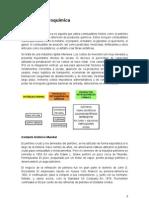 Historia de La Industria Petroquimica en Argentina - Informe