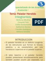 PALADAR HENDIDO 2