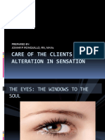 Care of the Clients With Alteration in Sensation