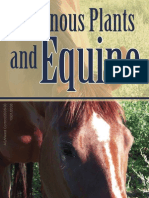 Equine Poisonous Plants