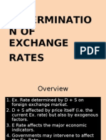 26247743 Determination of Exchange Rates 97 03