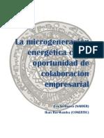 Microgeneración Energética