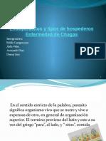 Tutoria de Biologia Endoparasito y Mal de Chagas