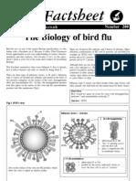 200 Bird_flu