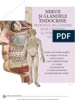Site Atlas Anatomie