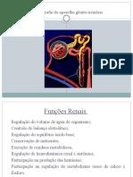 Trabalho de Medicina Nuclear(AV2)