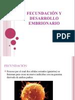 Fecundacion y Desarrollo Embrionario