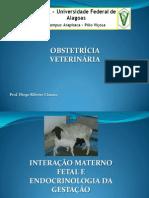 Endocrinologia Da Gestao e Int