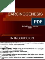 Carcinogenesis SIDEM