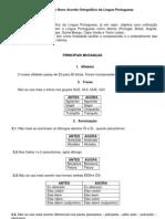 Novo Acordo Ortográfico (Marcelo Braga)