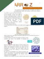 Quimica - Curios Ida Des Arroz Doce