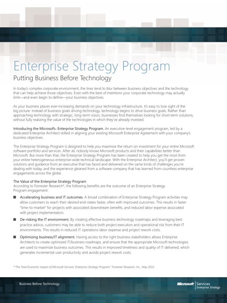 Enterprise Strategy Program Offerings Data Sheet Strategic